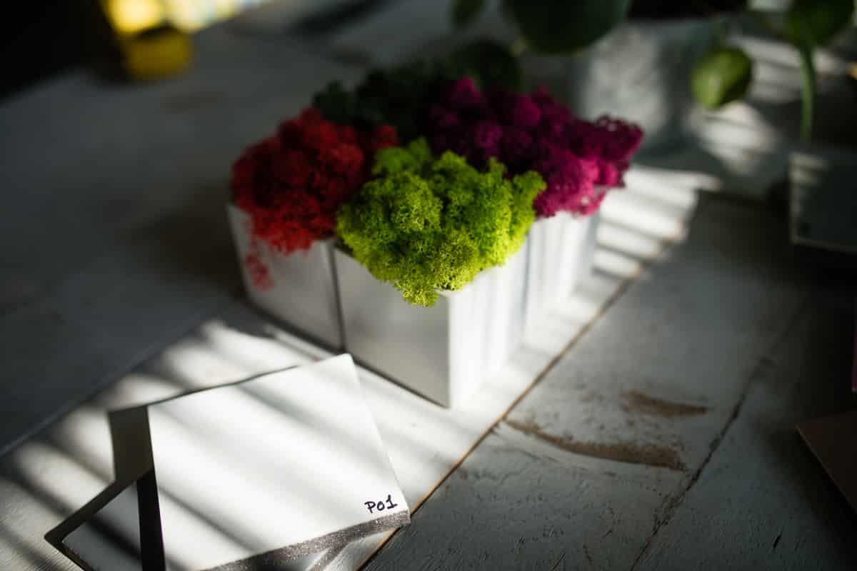 alex-havret-photographe-lyon-culinaire-corporate-entreprise-evenementiel-modul-paysageinterieur-1007
